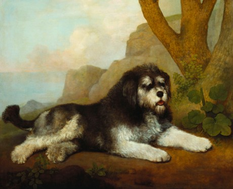A Rough Dog, 1790, Stubbs